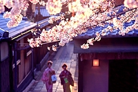 撮影場所: 京都府 京都市