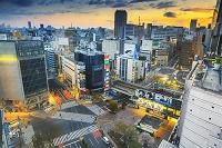 Japan, Kanto, Tokyo, Shibuya, Shibuya crossing by sunrise, Photo by Maurizio Rellini/SIME