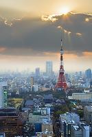 Japan, Kanto, Tokyo, Minato, Tokyo Tower, Photo by Maurizio Rellini/SIME