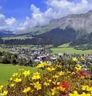 スイス グラウビュンデン州 アルプスと花