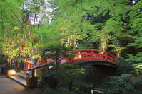 京都府 北野天満宮の御手洗祭と七夕祭