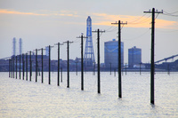 千葉県 江川海岸 海に続く電柱