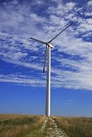 北海道 宗谷丘陵 風車