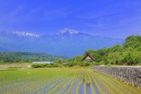 山梨県 水車のある田園と甲斐駒ケ岳の四季定点撮影(初夏)