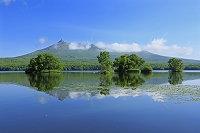 北海道 大沼公園と駒ヶ岳