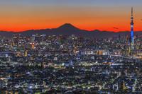 東京都 富士山とスカイツリー 夜景 市川アイリンクタウン