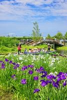千葉県 佐原水性植物園
