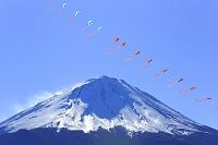 山梨県 富士山と連凧