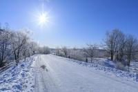 北海道 釧路湿原の道