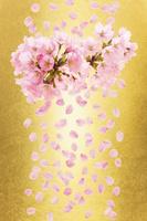 金バックの桜の枝と花びら