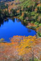 岩手県 八幡平 熊沼と紅葉