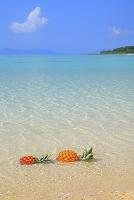 沖縄県 竹富島 パイナップルとコンドイビーチ