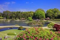 岡山県 岡山後楽園 沢の池