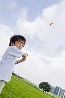 凧あげする日本人の男の子