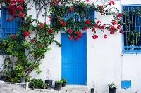 チュニジア 白壁の家