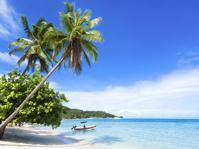 フランス領ポリネシア 夏のビーチリゾート