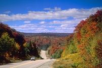 アメリカ合衆国 紅葉のハイウェイ
