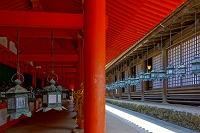 奈良県 春日大社 西回廊と万燈籠