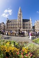 ベルギー ブリュッセル グラン=プラス(大広場) 花市と市庁舎