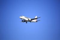 青空と飛行機 JAL