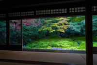 京都府 八瀬瑠璃光院 一階書院から望む瑠璃の庭
