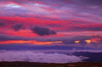岩手県 青森県 八幡平より朝焼け雲と雲海
