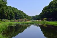 千葉県 市川市 大町自然公園