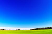 北海道 広大な緑の丘と秋晴れの空