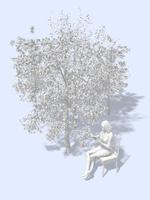樹木のそばで椅子に掛けて読書する女性