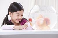 金魚と外国人の女の子