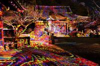 京都府 嵐山花灯路 法輪寺本堂に投影されたデジタル掛け軸