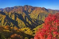 青森県 向白神山