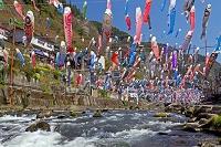 熊本県 杖立温泉 鯉のぼり