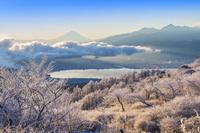 日本 長野県 高ボッチより富士山