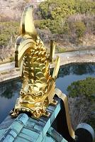 大阪府 大阪城天守閣の鯱