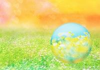 花畑と球体