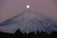 静岡県 冬の富士山と落ちる月