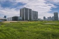 東京都 有明のマンション群と東京オリンピック施設建設予定地