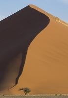 ナミビア 砂丘