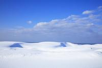 鳥取県 雪に覆われた鳥取砂丘