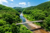 広島県 古びた吊り橋と新緑