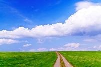 北海道 草原の道と雲流れる空