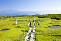 山形県 弥陀ヶ原の湿原に点在する池塘