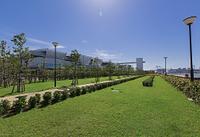 豊洲ぐるり公園と豊洲市場