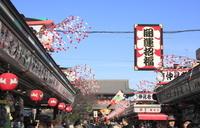 浅草寺 仲見世の正月飾りと宝蔵門