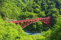 富山県 新緑の黒部峡谷鉄道 新山彦橋