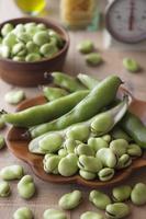 生鮮野菜 そら豆 春の食