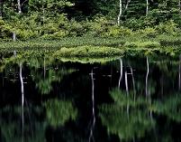 長野県 湖面