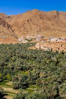 モロッコ ティネリール オアシス