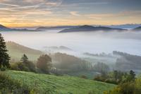 スイス 霧に覆われたタール自然公園